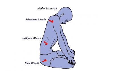 Yoga en Bandha's